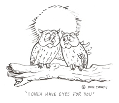 Owls - only have eyes scaled
