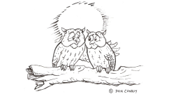 owls-only-have-eyes_484x270px_cropped